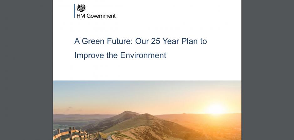 25 year environment plan pdf